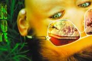 http://kireev.ru/media/2011/05/012.jpg